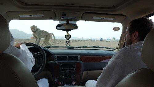 Jour 5 : Derniers moments à Médine et départ pour la Mecque