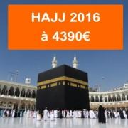 hajj-2016-eco